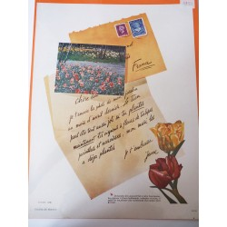 Ancienne publicité originale couleur pour les fleurs de Hollande 1950