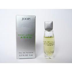 Miniature de parfum What about Adam de Joop!