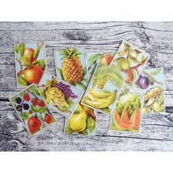 Lot de 10 Bons-Points scolaires : les fruits