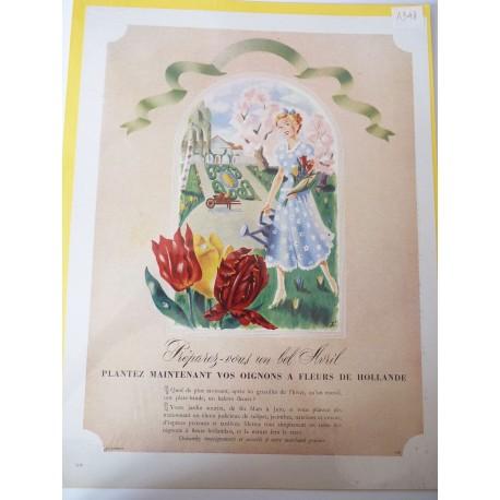 Ancienne publicité originale couleur pour les fleurs de Hollande 1948